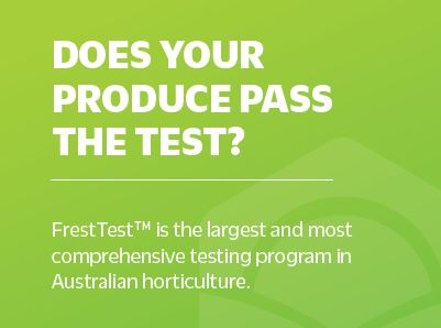 FreshTest Pass the test